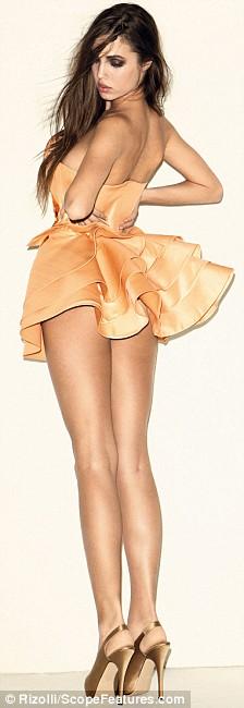 amber model