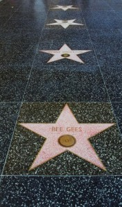 stars_on_walk_of_fame